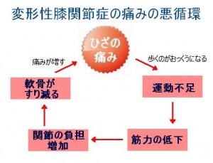 変形性膝関節症の痛みの悪循環図